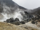 Hakone-Nationalpark (2)